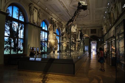 Naturhitsorisches Museum